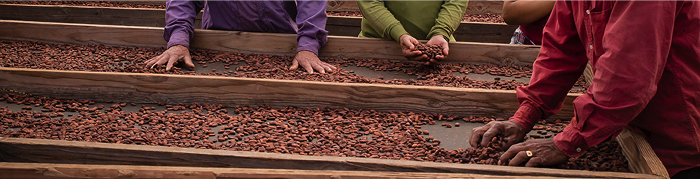 About Us - Chocolate and Coffee Grown in Hawaii at Waialua Estate on the North Shore of Oahu